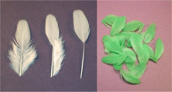 learn to dye your own feathers and thread